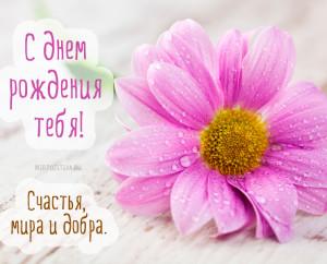 С Днём Рождения тебя! Счастья, мира и добра!