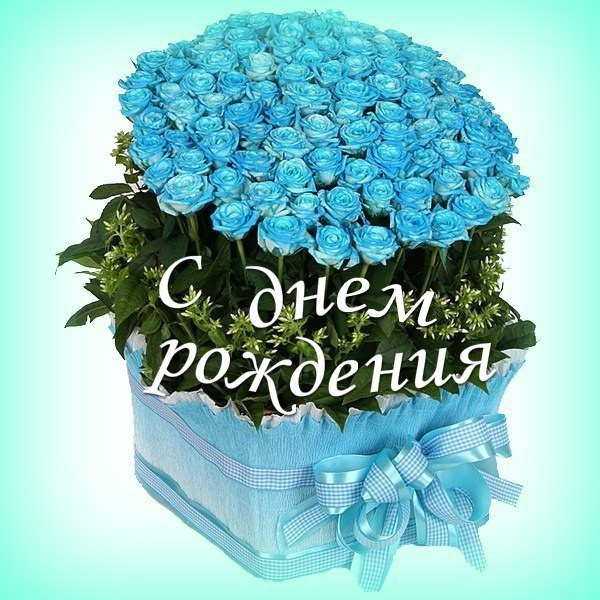 Приятная картинка на День рождения голубые цветы